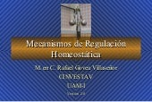 Regulación Homeostática