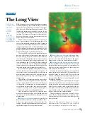 The Long View - Andy Blumenthal