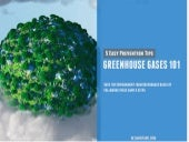 Greehouse Gases 101: 5 Easy Prevention Tips