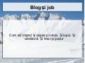 Groparu   blog și job