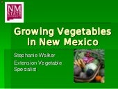Growing Vegetables in New Mexico - ...