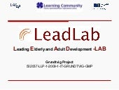 Grundtvig Project LEADLAB
