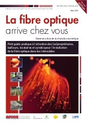 Guide fibre-immeubles-2011
