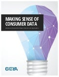 Making sense of consumer data