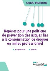 Guide pratique-prevention-risques-l...