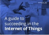 A Guide to Succeeding in the Internet of Things