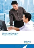 Guidebook Government Assistance Programmes - Businesses