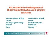 Guidelines nste-acs-slides