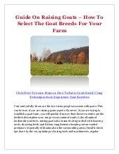 Guide On Raising Goats – How To Sel...