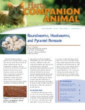 Hartz Companion Animal - Roundworms...
