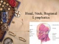 NurseReview.Org - Head Neck Regional Lymphatics