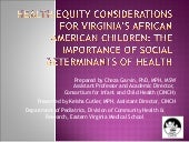 Health Equity Considerations For Vi...