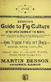 Benson's Guide to Fig Culture in th...