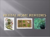 Herbal Home Remedies97
