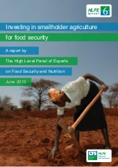 HLPE report on investing in smallho...