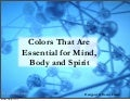 Holistic Colors for the Mind, Body and Spirit