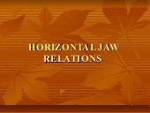 Horizontal jaw relations/ lingual orthodontics courses
