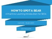 How to Spot a Bear - An Intro to Machine Learning for SEO