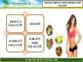 How to cure cellulite disease naturally | Best Herbal Remedies
