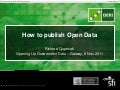 How to Publish Open Data