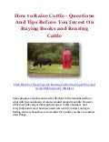 How to Raise Cattle - Questions And Tips Before You Invest On Buying Books and Rearing Cattle