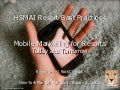 HSMAI Resort Marketing Best Practices - Mobile