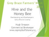 Hugh Simpson Eco Day - The Hive and...