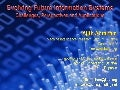 Evolving Future Information Systems: Challenges, Perspectives and Applications