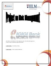 Icici Bank Rm Project