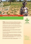 Mali: Sowing the Seeds of Success.  ICRISAT