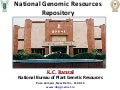 IFPRI - NAIP - National Genomic Resources Repository - K C Bansal