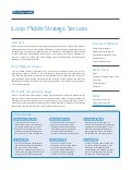 Product Sheet: Strategic services