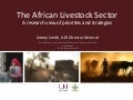 The African livestock sector: A research view of priorities and strategies
