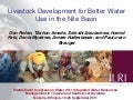 Livestock development for better water use in the Nile Basin
