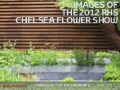Images of the 2012 RHS Chelsea Flow...