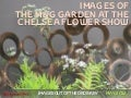 Images of The M&G Garden at The Chelsea Flower Show
