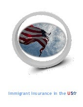 Immigrant Insurance in the USA