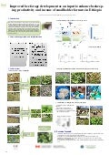 Improved bee forage development as an input to enhance beekeeping productivity and income of smallholder farmers in Ethiopia