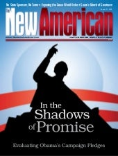 In the Shadows of Promise - The New...