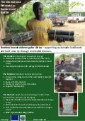 Bamboo household energy for Africa
