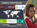 Behind the Brothel: Can We Break the Human Trafficking Cycle?