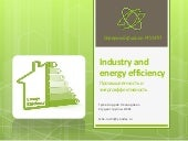 Industry and energy efficiency