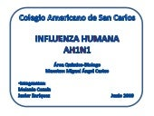A-H1N1..SWINE FLU...VIRUS DE LA INF...