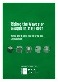 Riding the Waves or  Caught in the Tide? Navigating the Evolving Information Environment