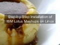 Installation Of Lotus Mashups1.1 On Linux v5 in vmware