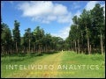 InteliVideo Analytics Revised