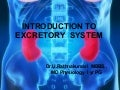 Introduction to excretory  system