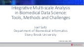 Integrative Multi-Scale Analysis in Biomedical Data Science: Tools, Methods and Challenges