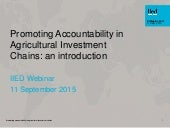 Promoting accountability in agricultural investment chains: an introduction