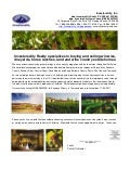 InvestorsAlly Realty wineries and vineyards property flyer